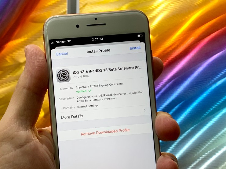 Install the iOS 13 beta profile.