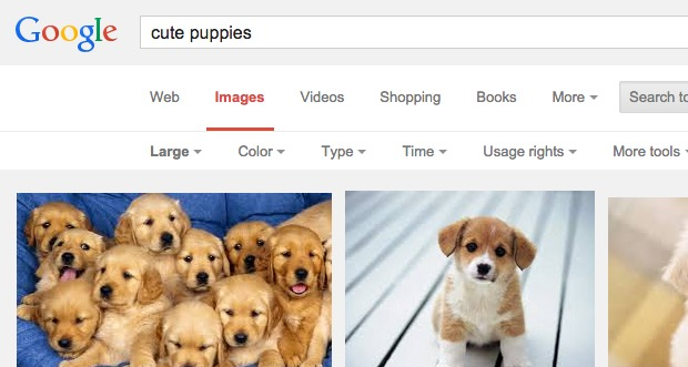 google-search-16