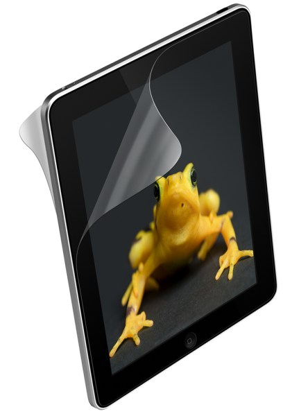 iPad 2 back protection