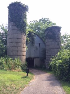 Image of Blackthorns drive-thru barn