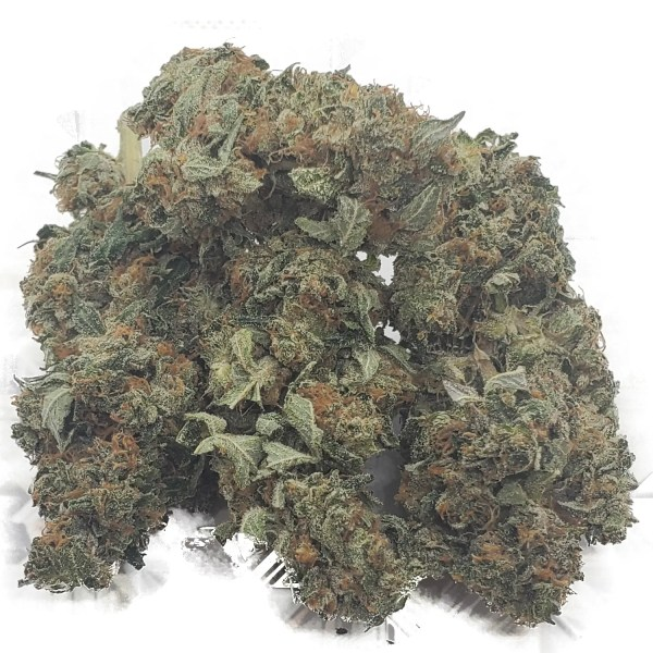 tom ford strain weed bulk
