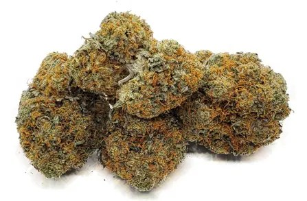 san fernando valley og strain weed cannabis featured