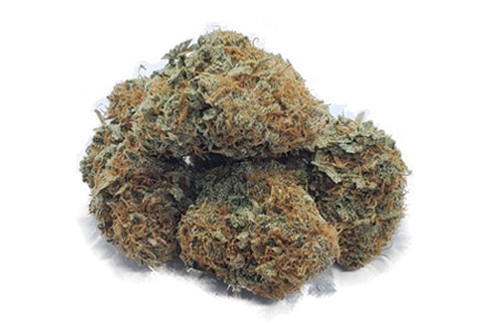 strawberry cough strain weed cannaibis marijuana featured