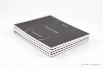 Gary Stewart Chorré: Beyond the Light front cover