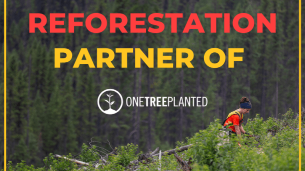 Sustainability-Reforestation-Partner-One-Tree-Planted