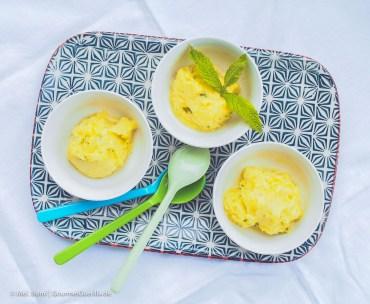 Ananas-Sorbet mit Rum und Minze |GourmetGuerilla.de