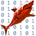 &Developer&Applications&Performance Tools&Shark 1