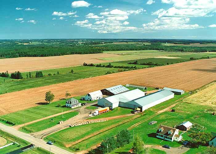 PEI Family Farm
