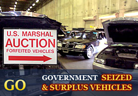 Government auto auctions