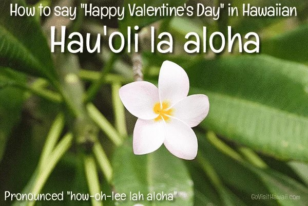 How To Say Happy Valentines Day In Hawaiian To Your