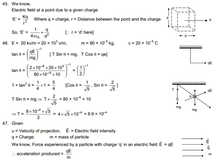 chapter 29 solution 19