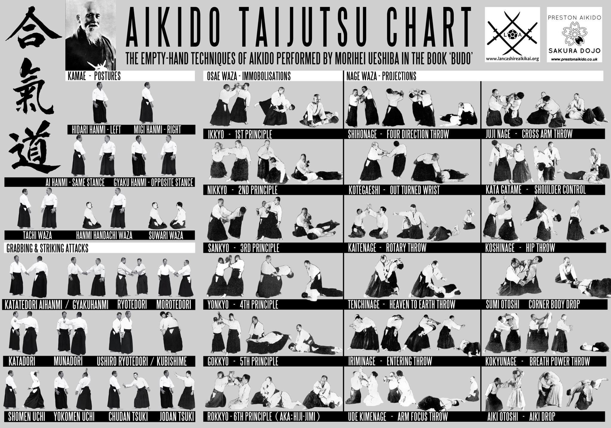 aikido taijutsu chart gowa ryu aikido