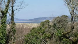 The view from the main house at Delvid Farm, Llangennith, Gower