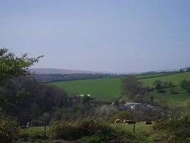 The view from The Barn holiday cottage, Llethryd Gower Peninsula