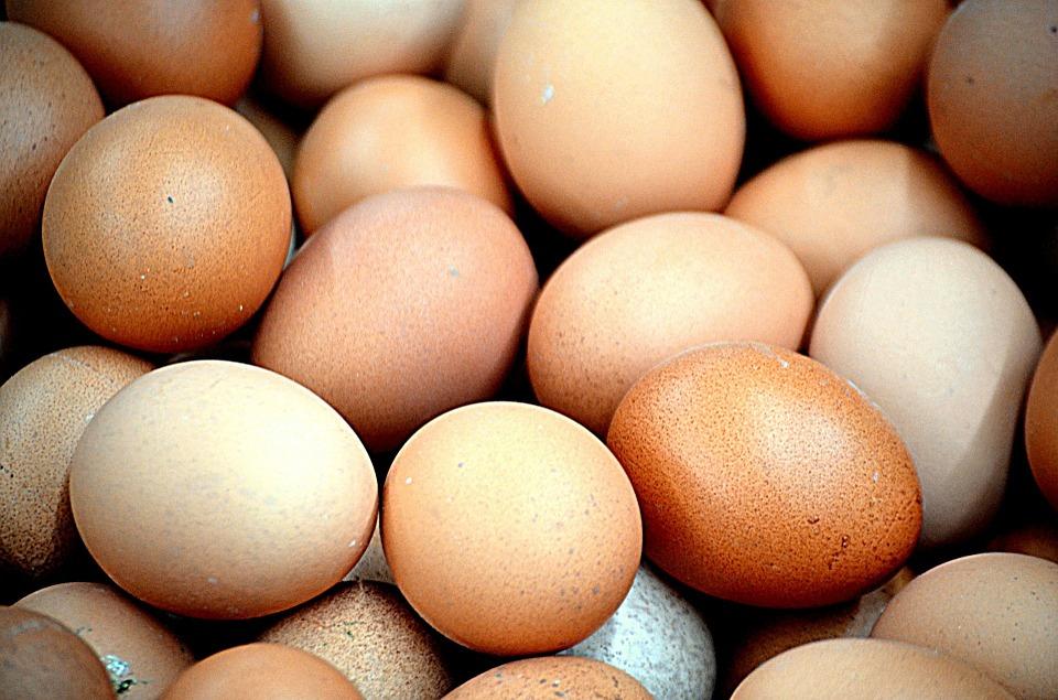 Peritos Europeos Trabajan En La Crisis Por Huevos Contaminados Con Fipronil