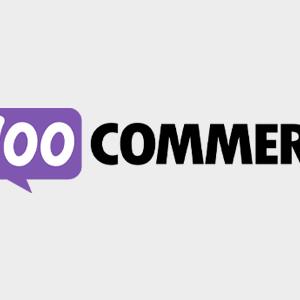 WooCoomerce Aweber Newsletter Subscription