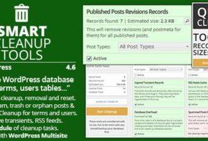 Smart Cleanup Tools Plugin 4.8