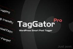 TagGator Pro 2.0 – WordPress Auto Tagging Plugin