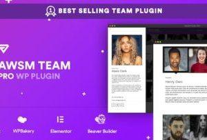 The Team Pro 1.8.0 – Team Showcase Plugin