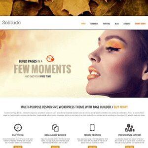 AIT Solitudo WordPress Theme 3.0.4