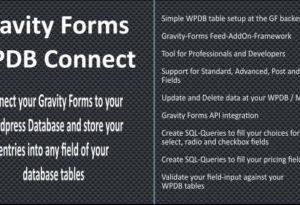 Gravity Forms WPDB MySQL Connect 3.6.5
