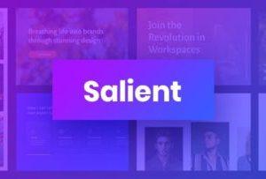 Salient WordPress Theme 13.0.3