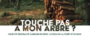 Touche pas à mon arbre? - États Généraux de la Forêt et du Bois @ En ligne