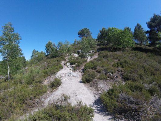 Fontainebleau - Massif des Trois Pignons