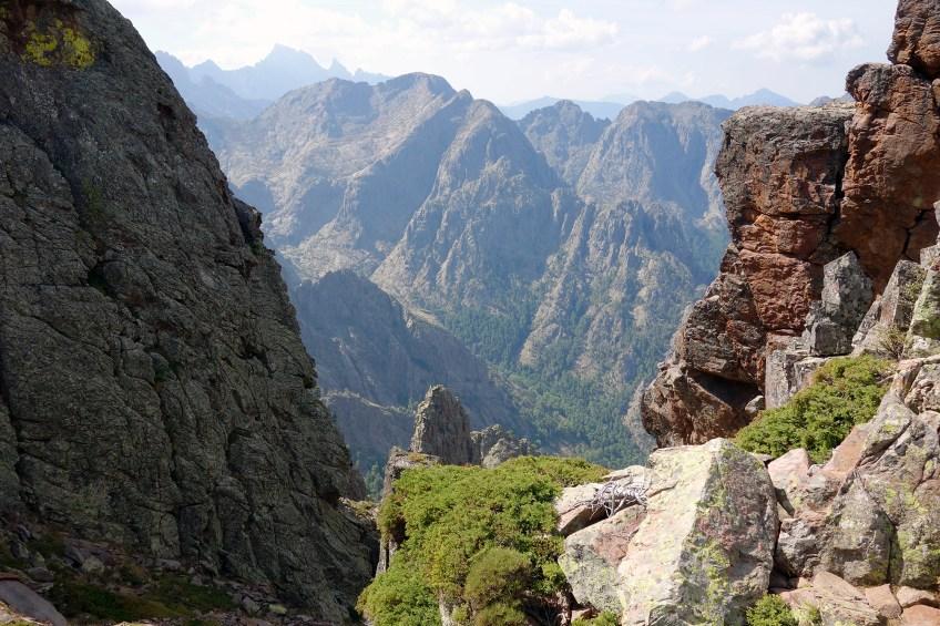 La montagne Corse - Olivier