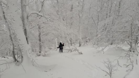 Poudreuse en Corse neige