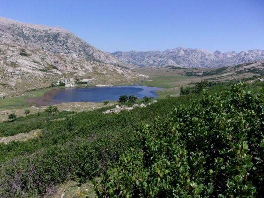 lago-di-nino-corsica