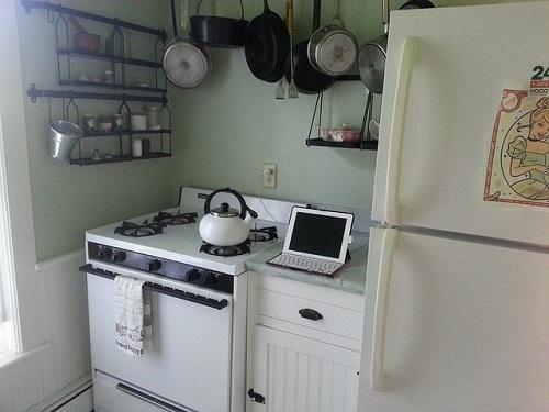 料理研究家 島本美由紀先生の食品を長もちさせる冷蔵庫の保存術【バイキング】