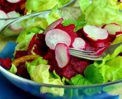 レタス野菜