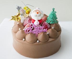 マツコの知らない世界:ヒビカのもみの木のケーキ!ピスタチオ入りで人気