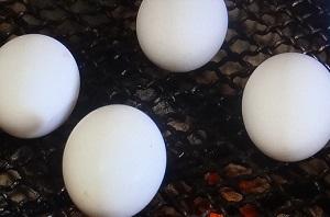 【ソレダメ】フルーツ炭酸水の作り方や卵を殻ごと焼く方法