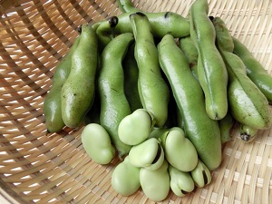 【ガッテン】そら豆の選び方、ゆで方、そらまめの皮もたべるレシピ!