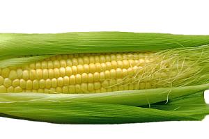 トウモロコシのレシピ