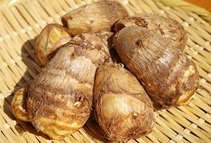 【相葉マナブ】里芋の産地レシピ!里芋のかき揚げ&里芋の炊き込みご飯