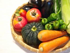 人参、にんじん、カボチャ、トマト