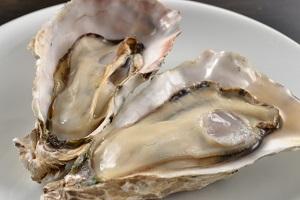 青空レストラン:牡蠣(かれん)のオリーブオイル漬けのお取り寄せ!長崎