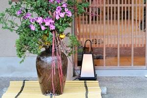 火曜サプライズ:麻布十番 和食「可不可」のアジの土鍋ご飯!戸田恵梨香