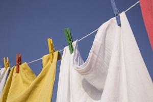 【坂上&指原のつぶれない店】スマホサイズの洗濯板!さくらの洗濯板のお取り寄せ