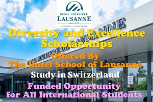 Diversity and Excellence Scholarships
