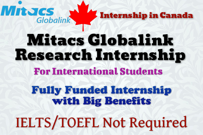 Mitacs Globalink Research Internship