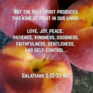 Galatians 5_22-23 with peaches