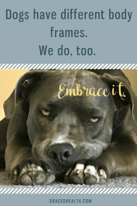 How to embrace our unique bodies the same way we embrace our beloved dog breeds.