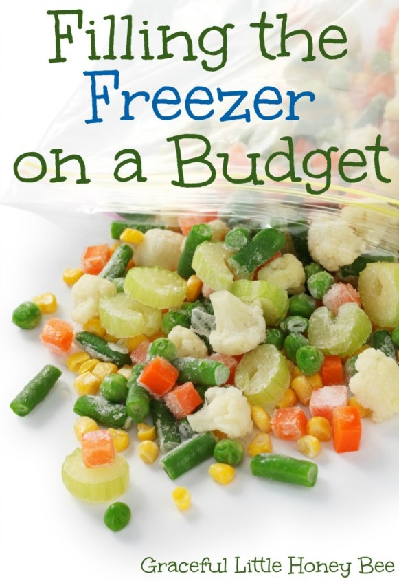Filling the freezer on a budget on gracefullittlehoneybee.com
