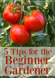 See these 5 easy tips for beginner gardeners on gracefullittlehoneybee.com