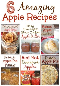 Every single one of these apple recipes are delicious!