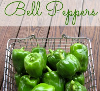 How to Freeze Bell Peppers on gracefullittlehoneybee.com